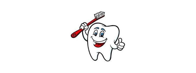 doktor ząbek